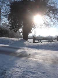 a photo of a the morning sun over snow