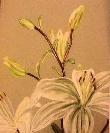 a pastel painting of a lilly