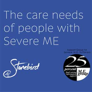 Care Needs of People with Severe ME